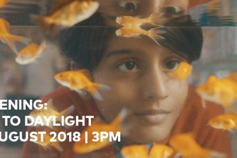 Film Screening: One Hour To Daylight