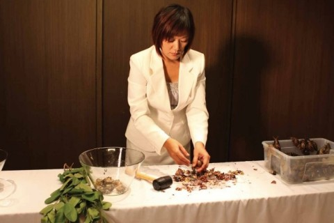 Snail Paradise – A Gastronomic Experience