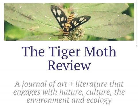 Call for submissions for Issue 3, The Tiger Moth Review
