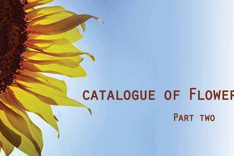 Catalogue of Flowers - Part Two