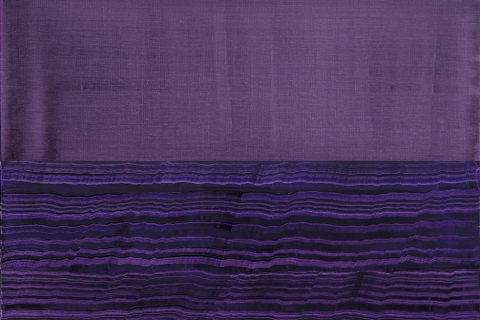 Opening Reception with the Artist, Ricardo Mazal: Violeta + Bhutan