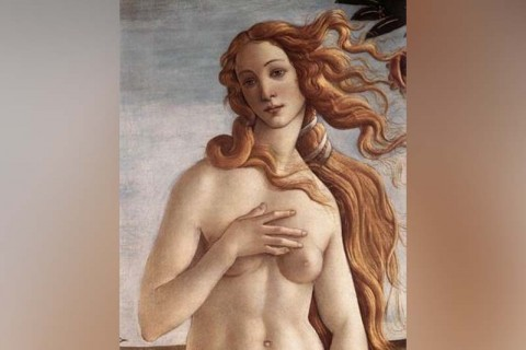 The History of the Nude in Art